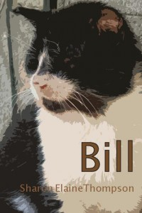 Bill cover title image color text3 FINAL